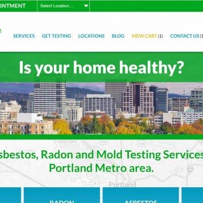 Healthy Home desktop homepage